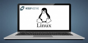 manual de comandos linux