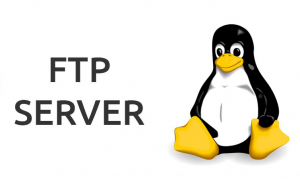ftp server linux copia
